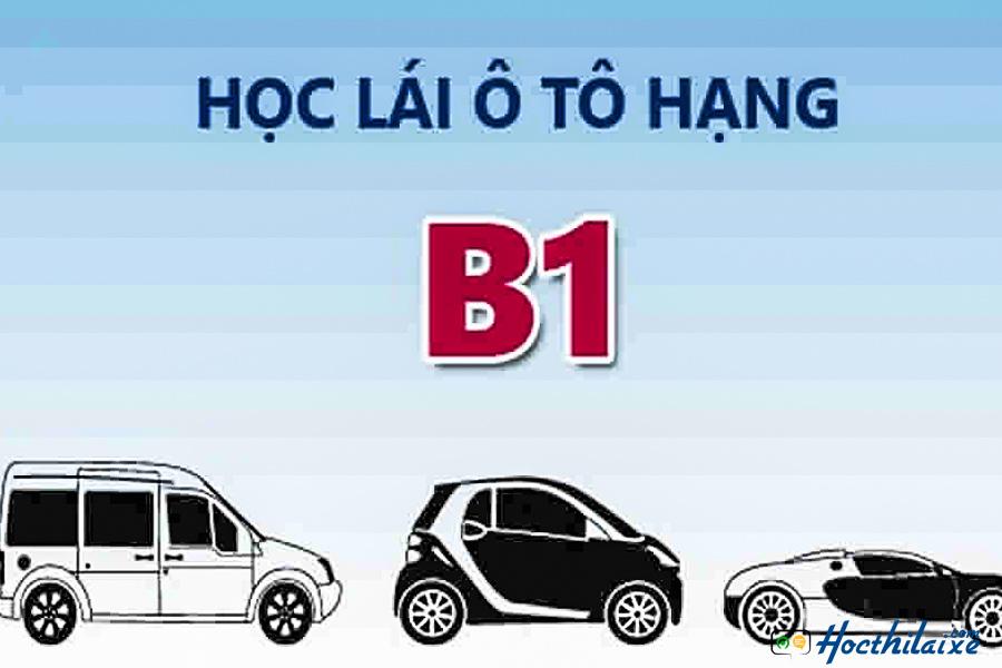 Đào tạo lái xe ô tô B1 Hải Nam
